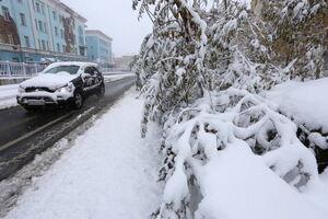 عکس/ بارش برف در روسیه