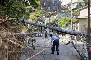 خسارت سنگین طوفان در ژاپن