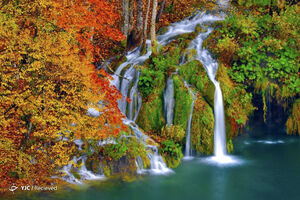 تصاویر دیدنی از طبیعت سرتاسر جهان