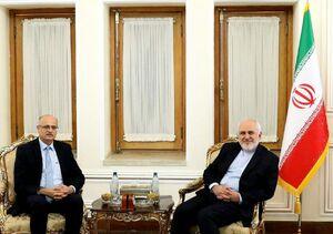 ظریف در دیدار قائم مقام وزیر خارجه هند