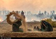 عکس/ بازسازی واقعه عاشورا در کاشان