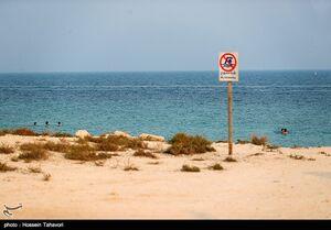عکس/ اقدام قابل تحسین در سواحل کیش