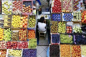 کاهش ۱۵ درصدی قیمت انواع میوه در بازار