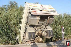سقوط کامیونت به داخل نیزار