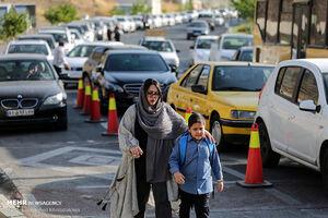عکس/ شور و شوق شکوفههای شهر