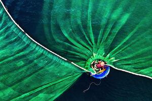 تصویر زیبا از یک صیاد