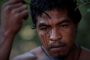 نگهبانان جنگل در برزیل