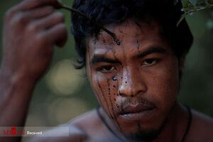 عکس/ نگهبانان جنگل در برزیل