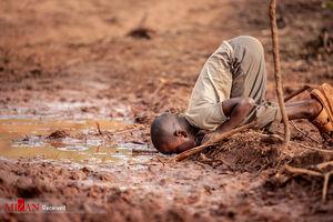 عکس/ برترینهای مسابقه عکاسی محیط زیست ۲۰۱۹