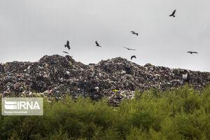 دفن غیراصولی زباله در جنگلهای سراوان