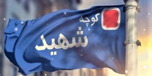 مقصر پروژه شهید زدایی در تهران مشخص شد