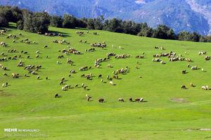 نگین درخشان کوه های نمین اردبیل