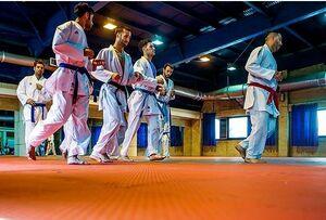 ردپای سردسته جریان نفاق کاراته در دفتر یک مسئول