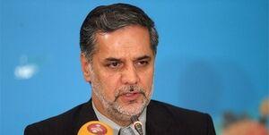 نقوی حسینی: تصمیم درباره گام چهارم برجام بر عهده دولت است