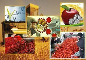 شگرد جذاب برای صرفهجویی ۸ میلیارد دلاری در کشاورزی