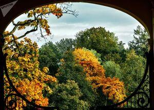 جلوههای پاییزی در سنپترزبورگ