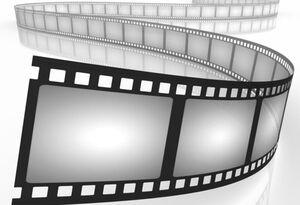 مسئولان سازمان سینمایی باید پاسخگوی اتفاقات زشت جشنواره فیلم کوتاه تهران باشند