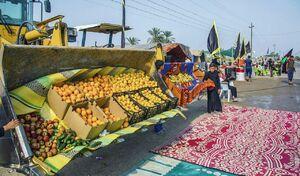 تصویر جالب از پذیرایی زائران حسینی(ع)