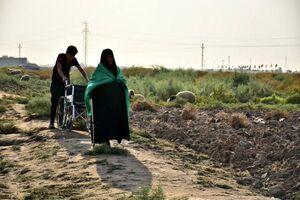پیاده روی مادر ویلچری در اربعین! +عکس