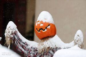 عکس/ سر رسیدن زمستان آمریکا