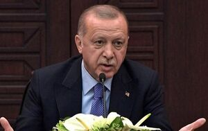 اردوغان: با پوتین درباره منطقه امن صحبت میکنم