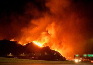 فیلم/ آتشسوزی در قطار حامل هواداران فرایبورگ