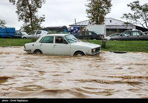 فیلم/ جاری شدن سیلاب در ایلام