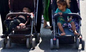مادرانه در پیاده روی اربعین +عکس
