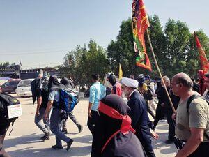 عکس/ تولیت آستان قدس رضوی در راهپیمایی اربعین