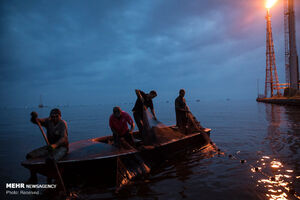 عکس/ ماهیگیری در میدان نفتی ونزوئلا