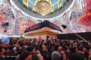 عکس/ عزاداری زائران اربعین حسینی در حرم علوی