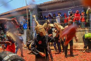 عکس/ جنگ گوجه فرنگی در اندونزی