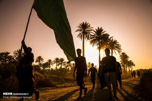 عکس/ پیاده روی زائران اربعین در منطقه الجربوعیه