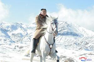 عکس/ اسب سواری رهبر کره شمالی