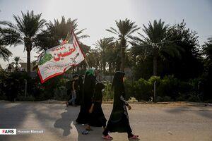 عکس/ زائران اربعین از مسیر بغداد به کربلا