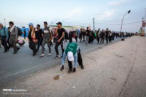 عکس/ راهپیمایی اربعین حسینی در مسیر نجف به کربلا