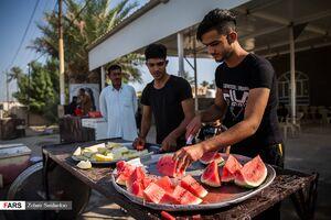 پذیرایی عراقی ها از زوار الحسین با تمام داراییشان