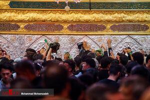 عکس/ کربلا مملو از عاشقان حسینی
