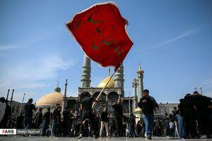 عکس/ عزاداری روز اربعین در جوار حضرت معصومه(ُس)
