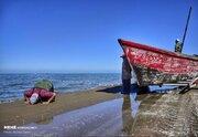 عکس/ آغاز فصل صید ماهی در خزر