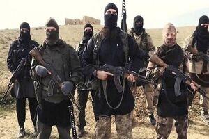 داعش به دنبال اقدام تلافیجویانه است؟
