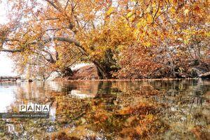 عکس/ طبیعت زیبای پائیزی روستای دشتک