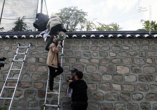 عکس/ کرهای ها از دیوار سفارت آمریکا بالا رفتند