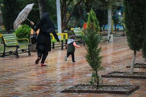 عکس/ بارش باران پاییزی در تهران
