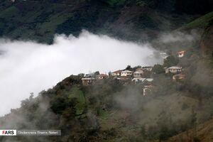 عکس/ سمفونی مه در طبیعت