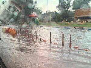 عکس/ باران و آبگرفتگی در خرمشهر