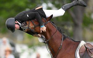 تصویر دیدنی از لحظه سقوط سوارکار از روی اسب