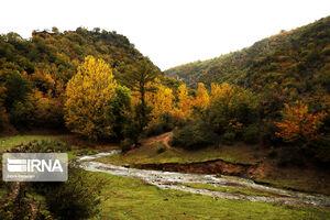 عکس/ حالوهوای پاییزی در جاده چالوس