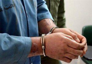 دستگیری یکی از عاملان اغتشاشات در خیابان ولیعصر تهران