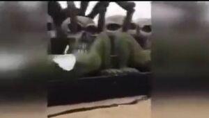 عربستانیهای خشمگین